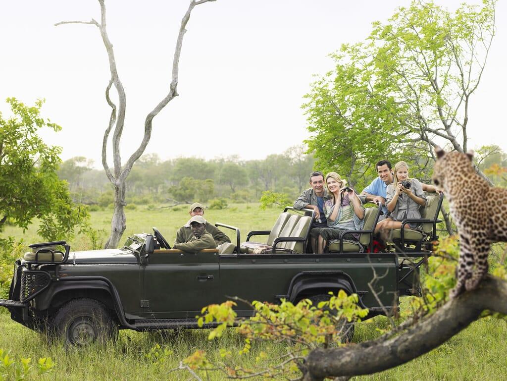 South Africa family safari holiday Kruger Sabi Sands