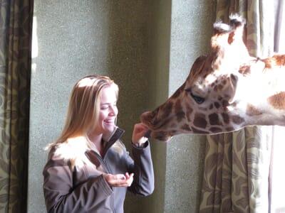 woman feeding giraffe Kenya family safari
