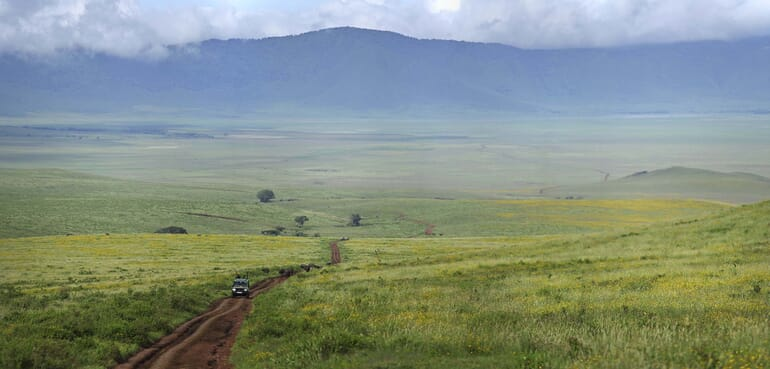 Highlands Ngorongoro landscape scenic Tanzania family safari
