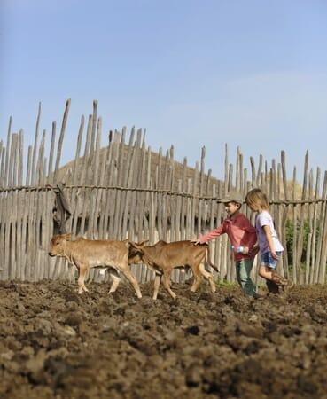 Highlands Ngorongoro cultural experience Tanzania family safari