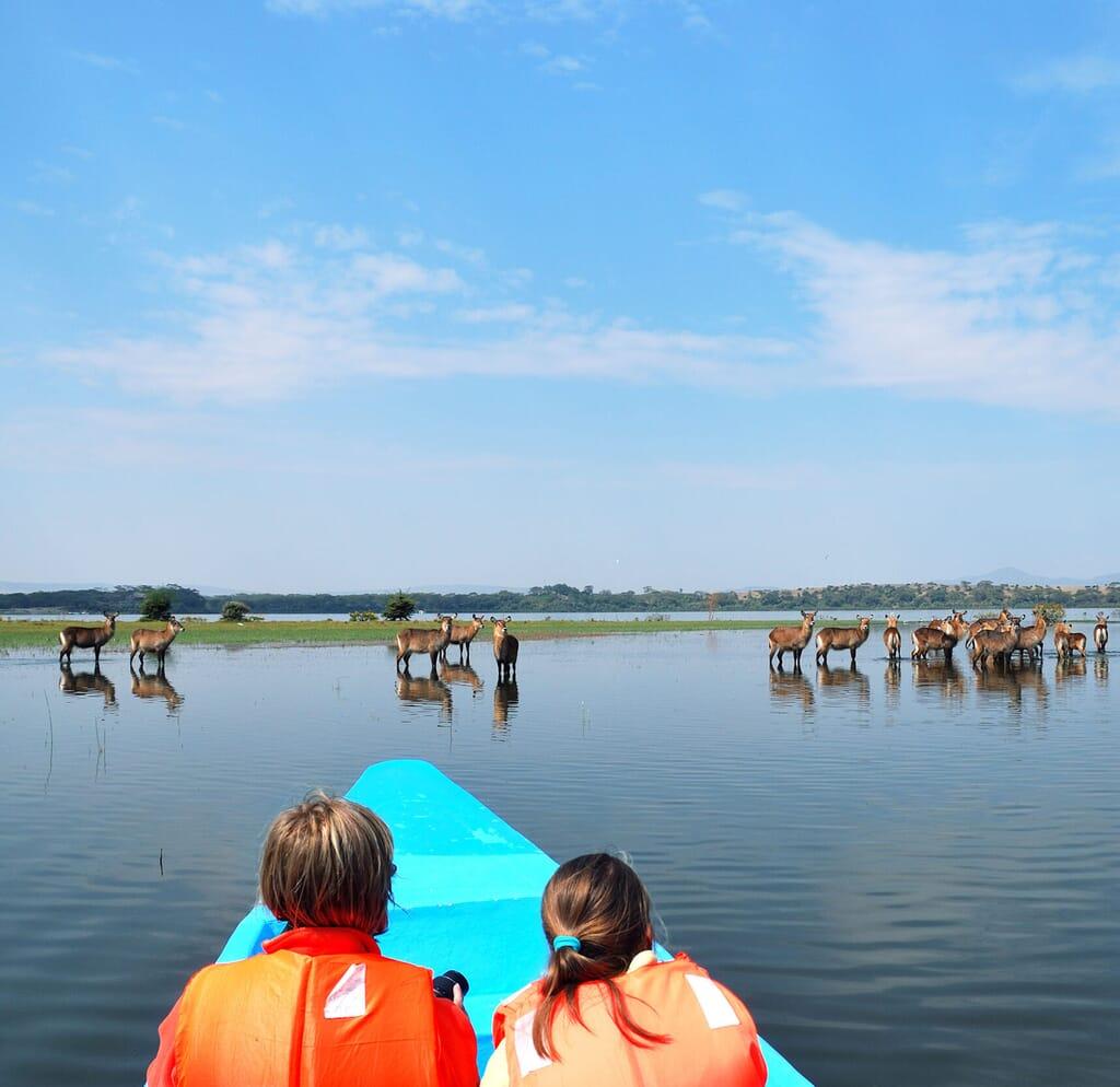 Best time to visit Kenya - Rift Valley lakes boat safari