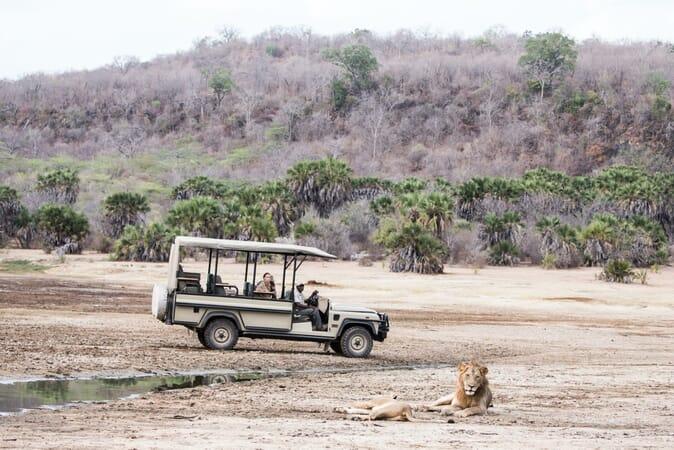 Tanzania Nyerere Sand Rivers Selous family safari game drive