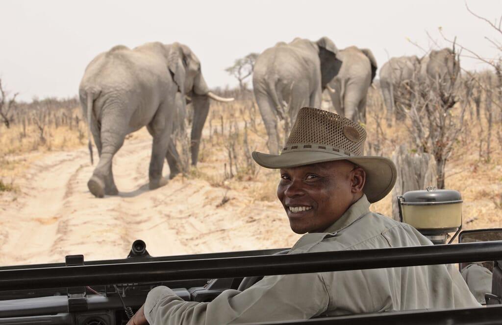 Botswana private guide elephants family safari