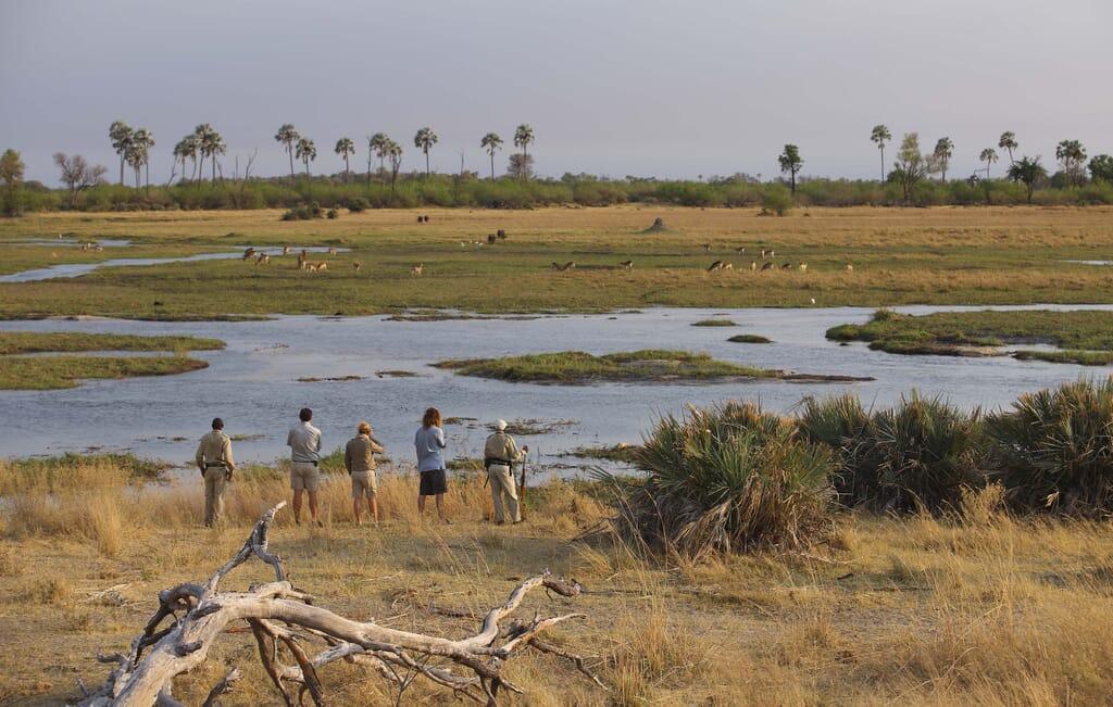 Botswana Okavango Delta Sandibe walking safari family
