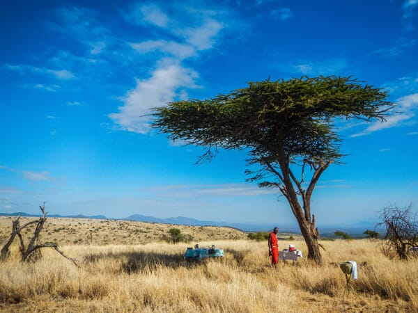Kenya Lewa House game drive family safari