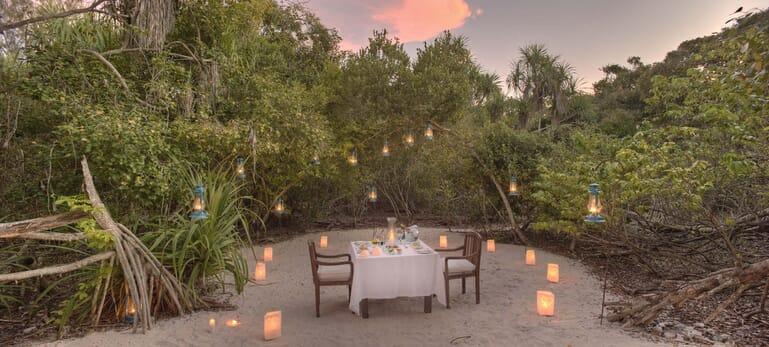 Tanzania Zanzibar Mnemba family safari forest dining