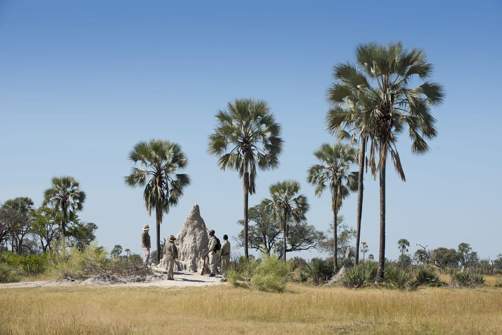Botswana Nxabega Okavango Delta andBeyond