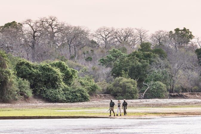 Tanzania Nyerere Sand Rivers Selous family safari walking