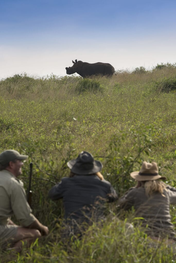 Walking-safaris-with-andBeyond-Phinda-Private-Game-Reserve-1-scaled.jpg?w=684&h=1024&scale