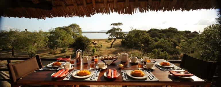 Tanzania Nyerere Siwandu family safari