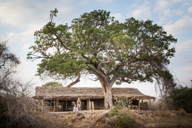Tanzania Ruaha kigelia family safari