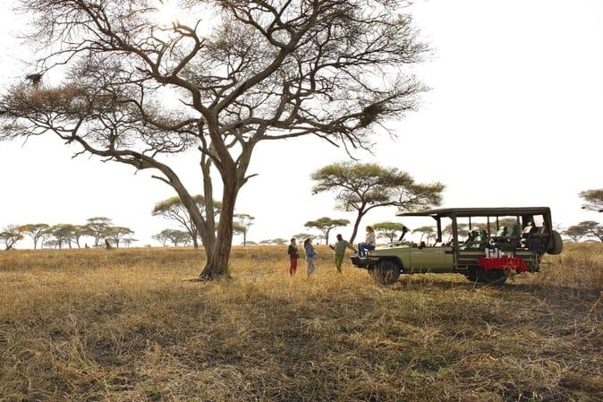 Tanzania Tarangire Oliver's Camp family safari