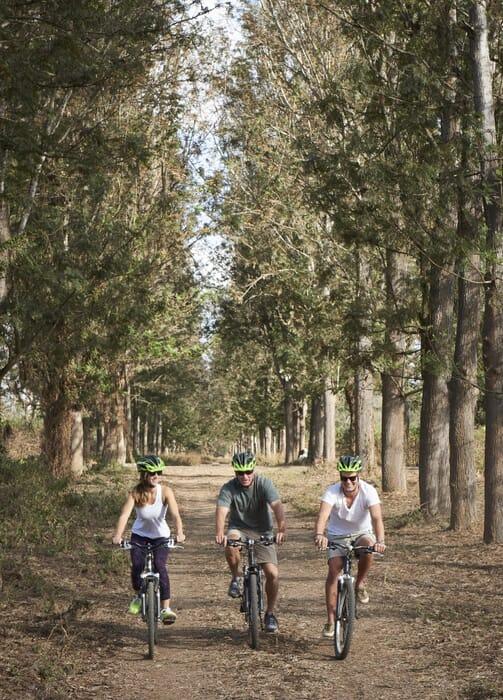 Tanzania Arusha legendary lodge cycling
