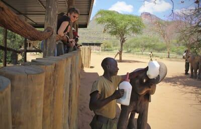 Kenya Laikipia Sarara family safari reteti