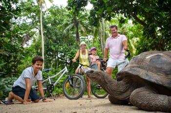 family giant tortoise seychelles