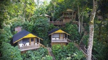 Uganda Buhoma Lodge luxury safari lodges