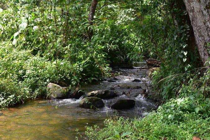 Uganda Bwindi waterfall