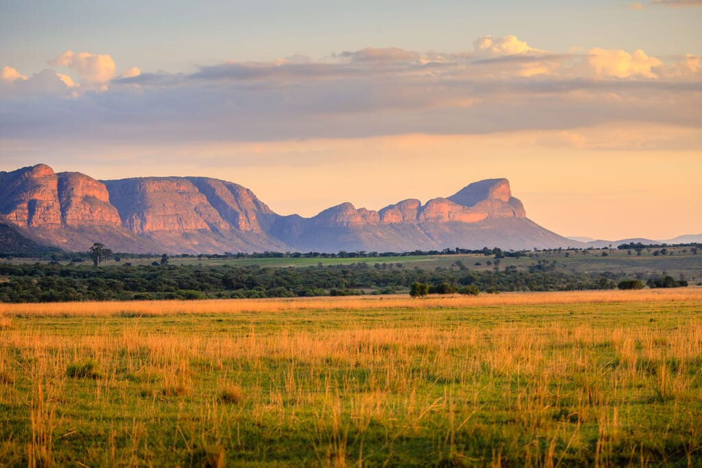 South Africa family safari holiday The Waterberg