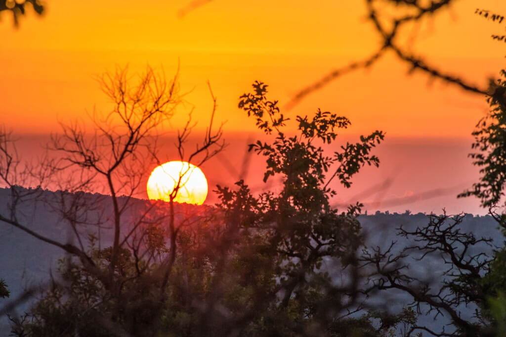 South Africa family safari holiday The Waterberg Welgevonden